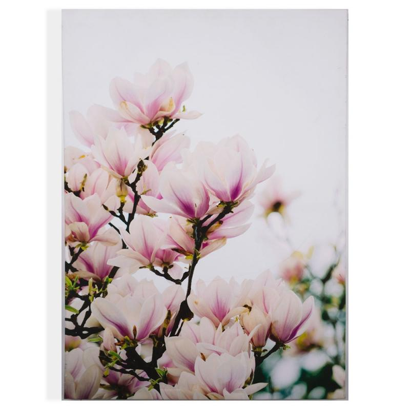 Frameless Malerei - Druck auf Leinwand, Magnolia Blossoms 104570, Wall Art, Graham Brown