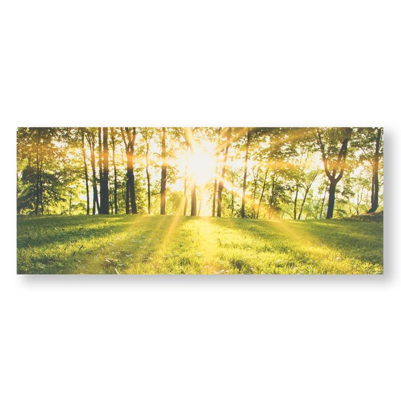 Frameless Malerei - Druck auf Leinwand - 105887, Tranquil Forest Fields, Graham & Brown