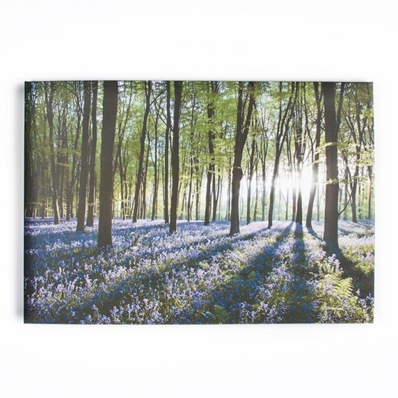 Frameless Malerei - Druck auf Leinwand - 40-247, Bluebell Lands., Wall Art, Graham Brown