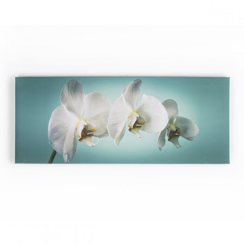 Frameless Malerei - Druck auf Leinwand 40-615, Teal orchid, Wall Art, Graham Brown
